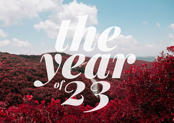 the year 23 (3)